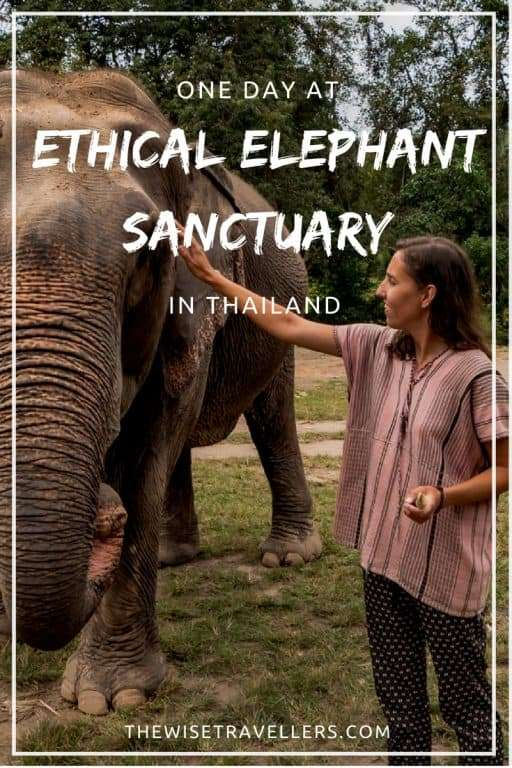 Ethical Elephant Sanctuary in Thailand Pinterest