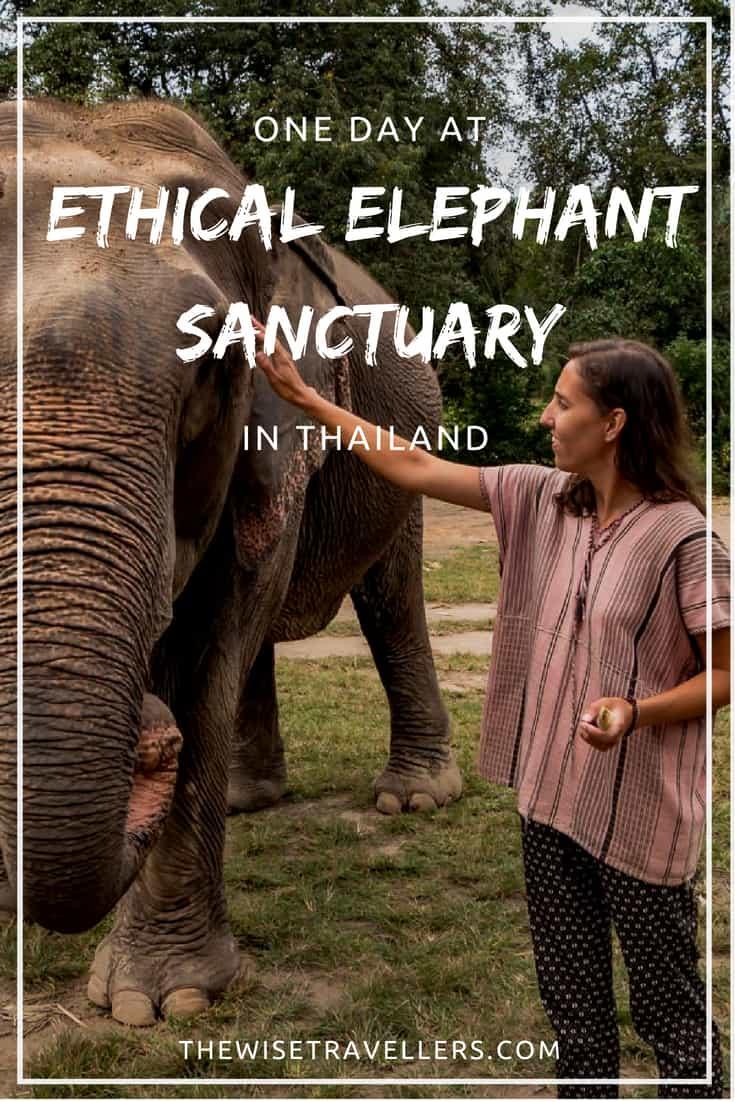 Ethical Elephant Sanctuary in Thailand Pinterest