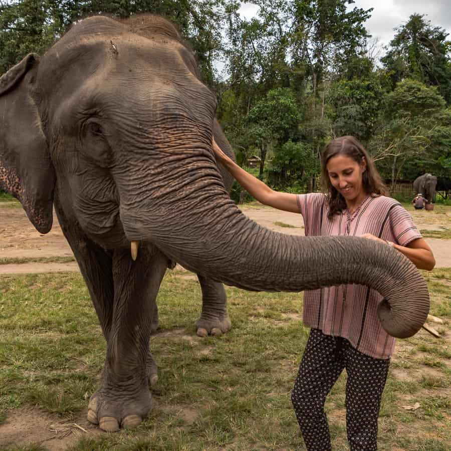 One Day at Ethical Elephant Sanctuary In Thailand elephant sandrina