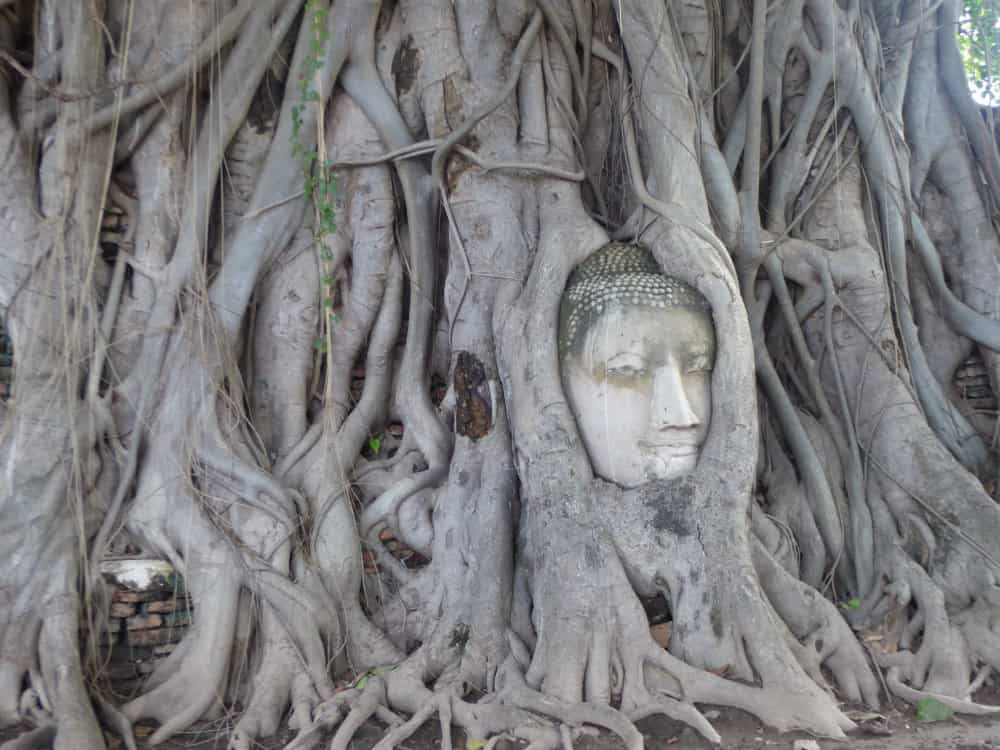 best-cities-to-visit-in-Thailand-Ayutthaya-A-Social-Nomad