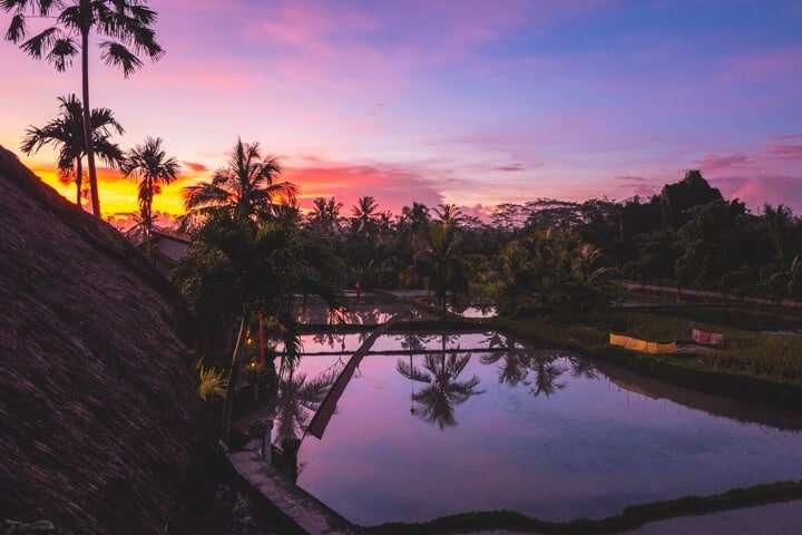 reasons-to-visit-bali-2019-1