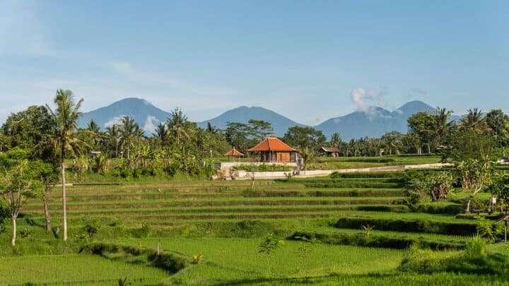 reasons-to-visit-bali-2019-3