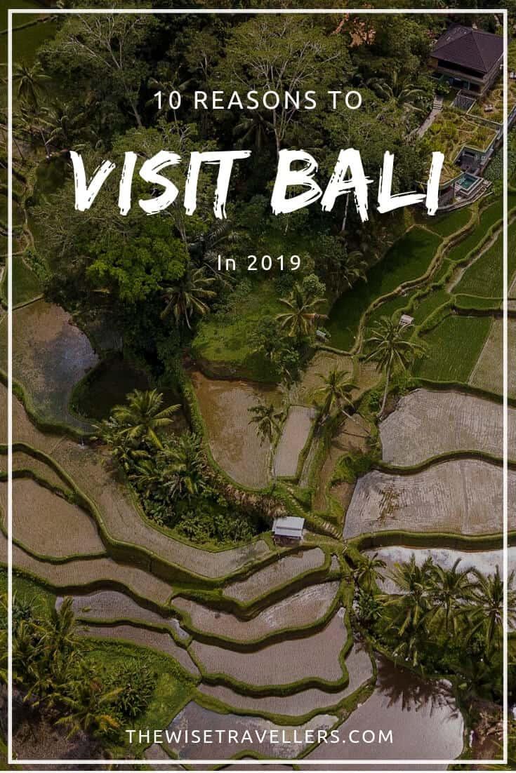 reasons-to-visit-bali-2019-pinterest2