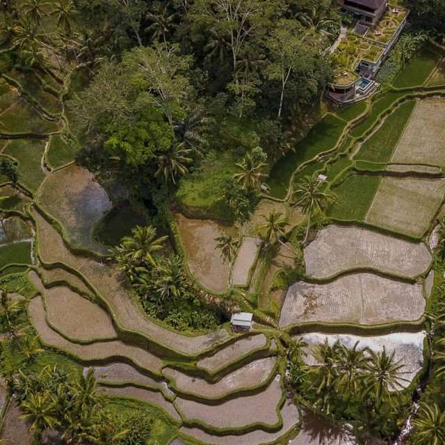 reasons-to-visit-bali-2019-slide
