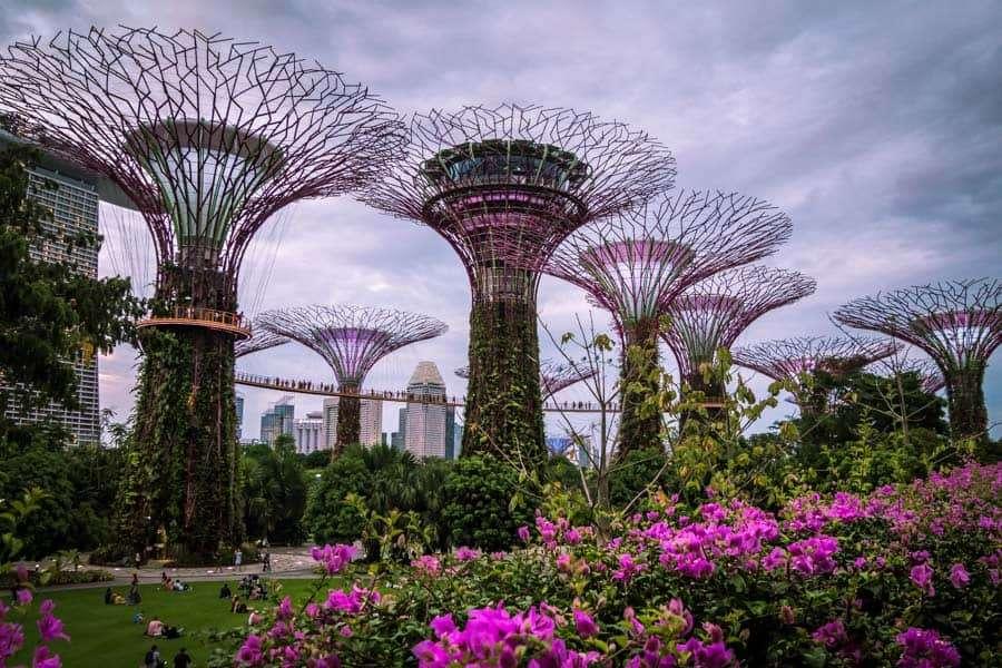 eco-friendly-destinations-singapore