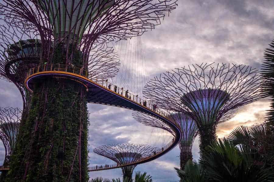 singapore-travel-itinerary supertree grove