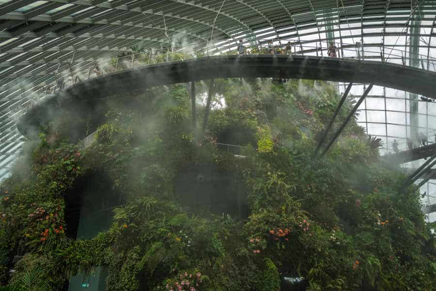 singapore-travel-itinerary cloud forest
