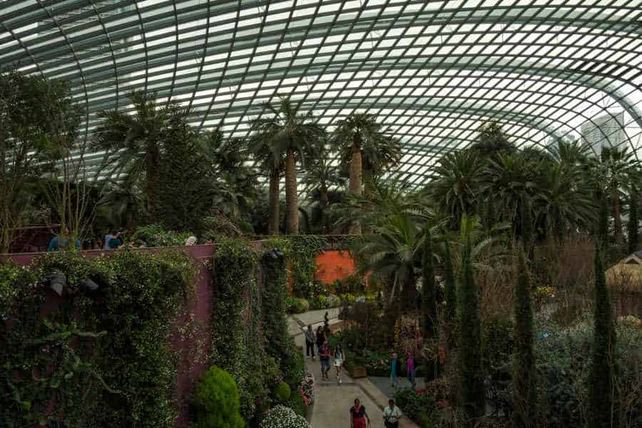 singapore-travel-itinerary flower dome