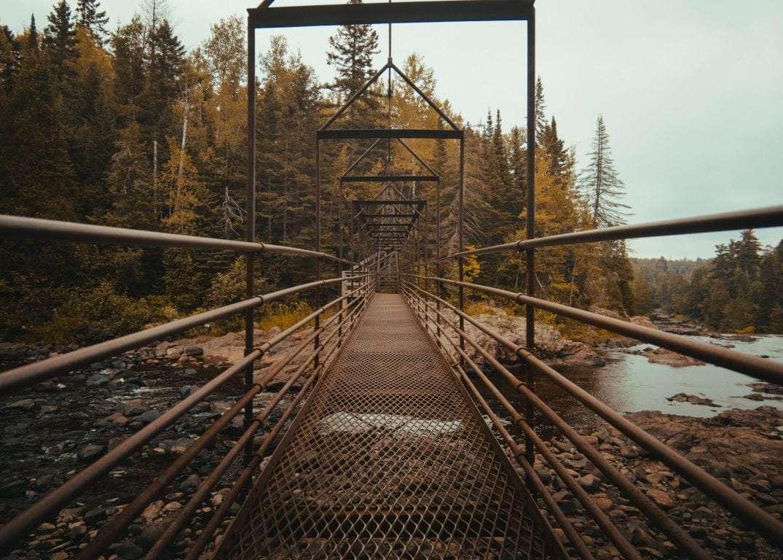 what-ecotourism-is-bridge