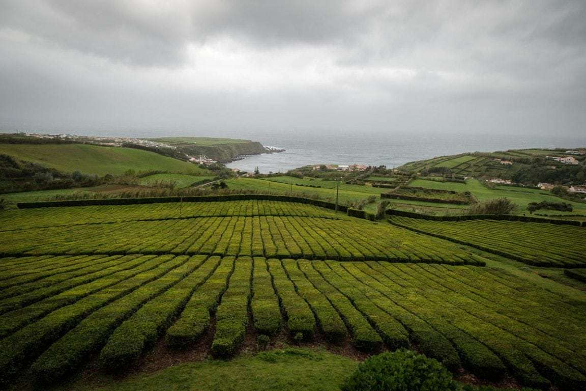 wise-travellers-sao-miguel-acores (7)