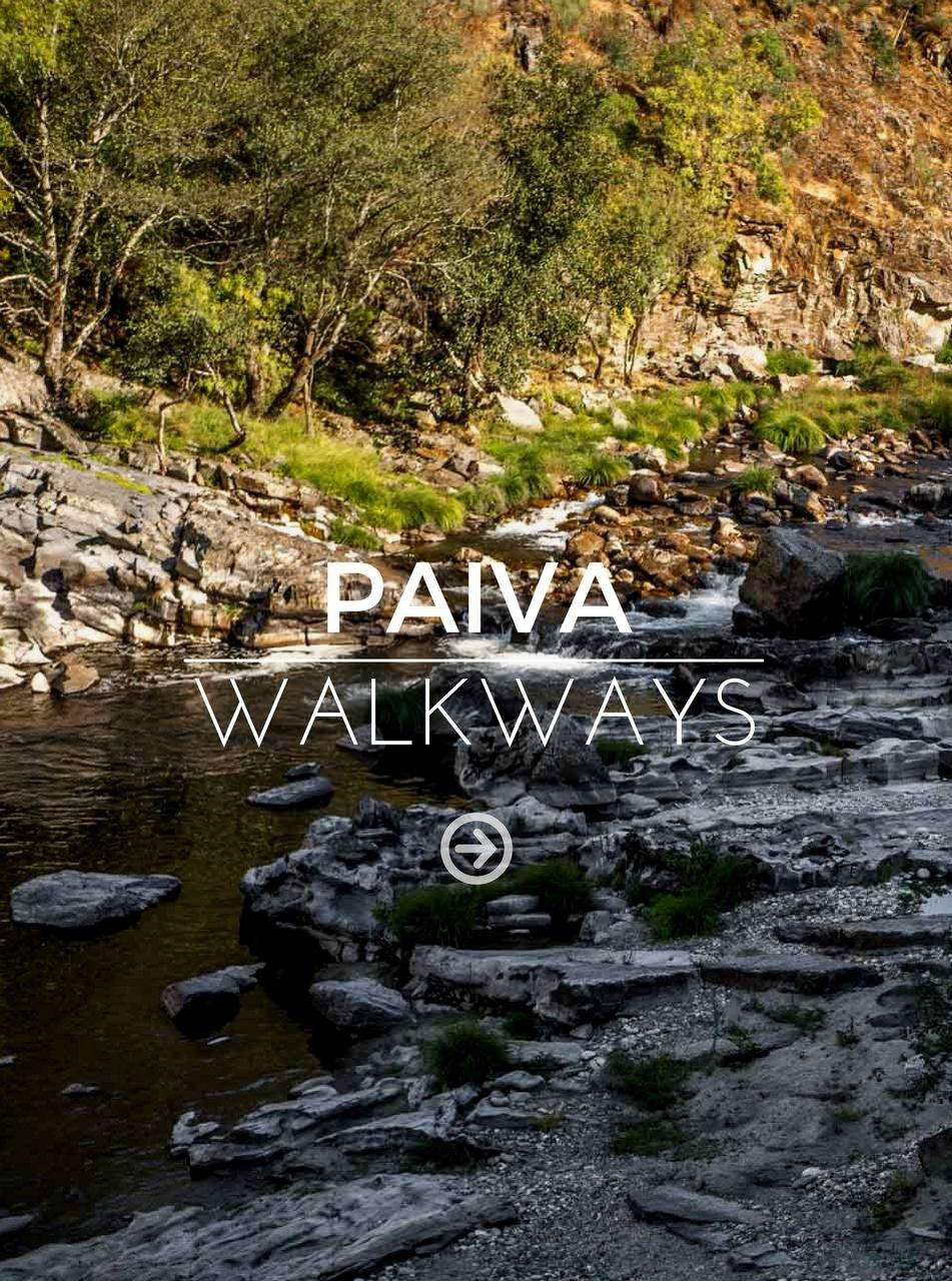 Paiva walkways gallery
